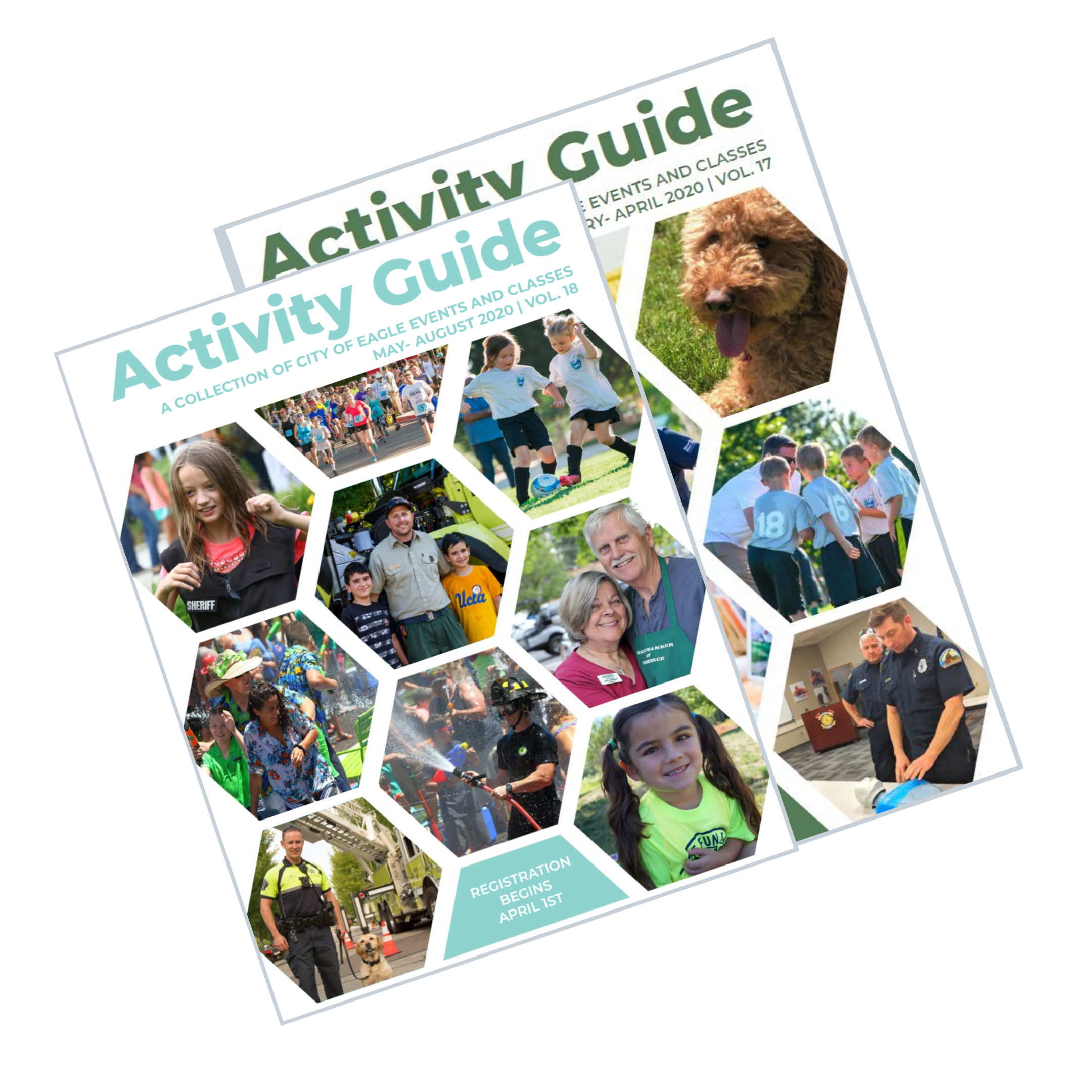 activity guide link