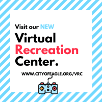 virtual recreation center logo