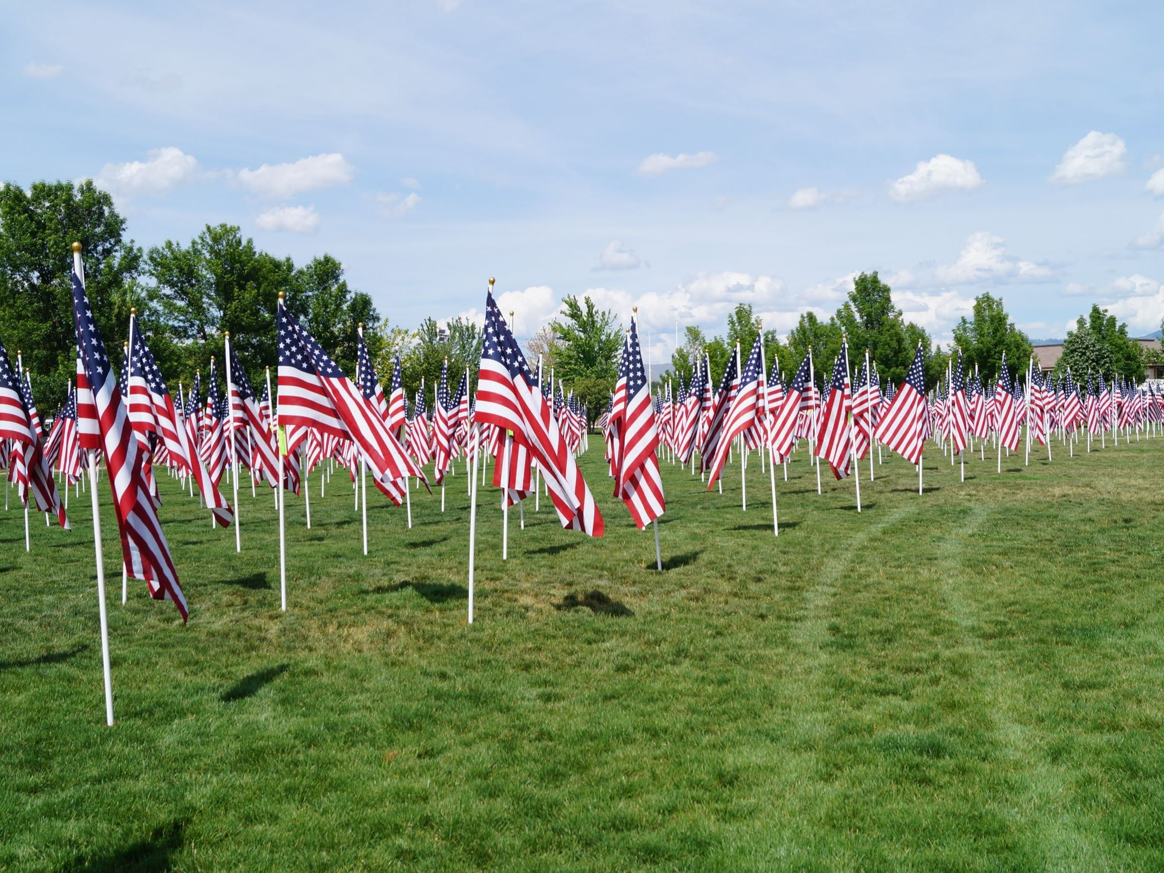 Flags at Merrill Park for the Eagle Field of Honor