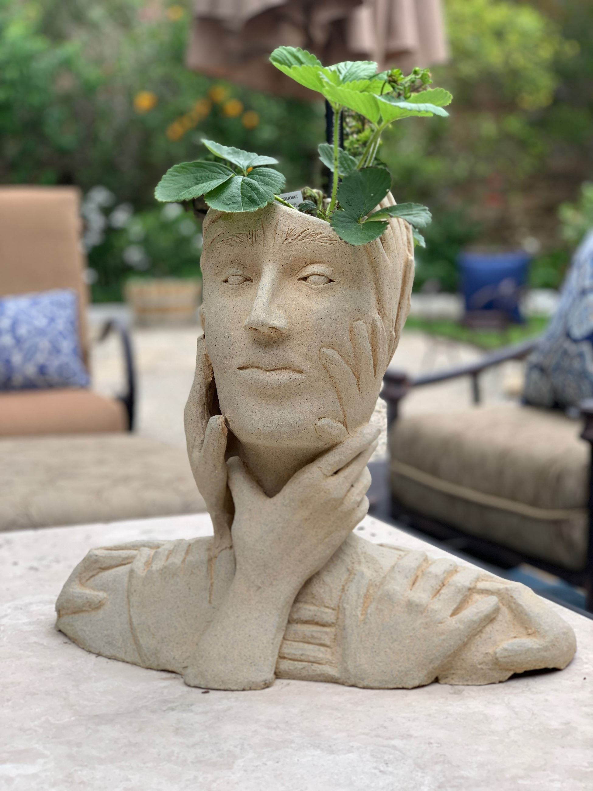 A sculpted bust of a woman with a plant growing out of her head.