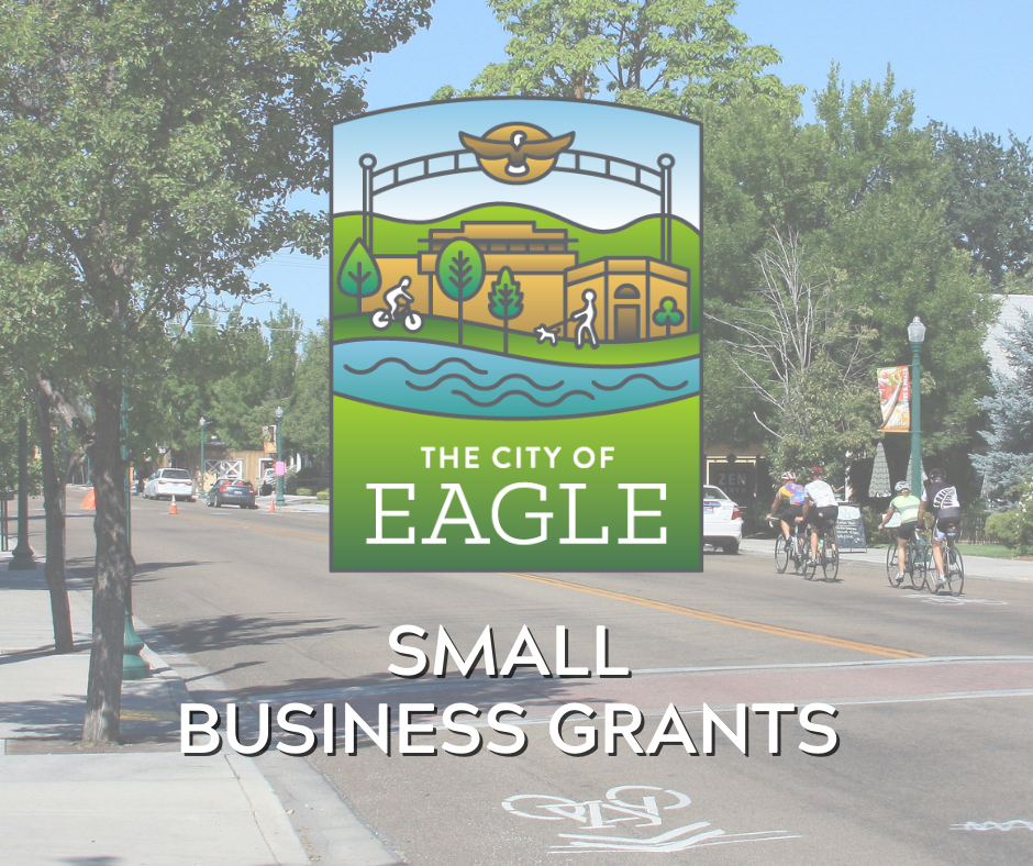 "City of Eagle Logo and text that says ""Small Business Grants"""