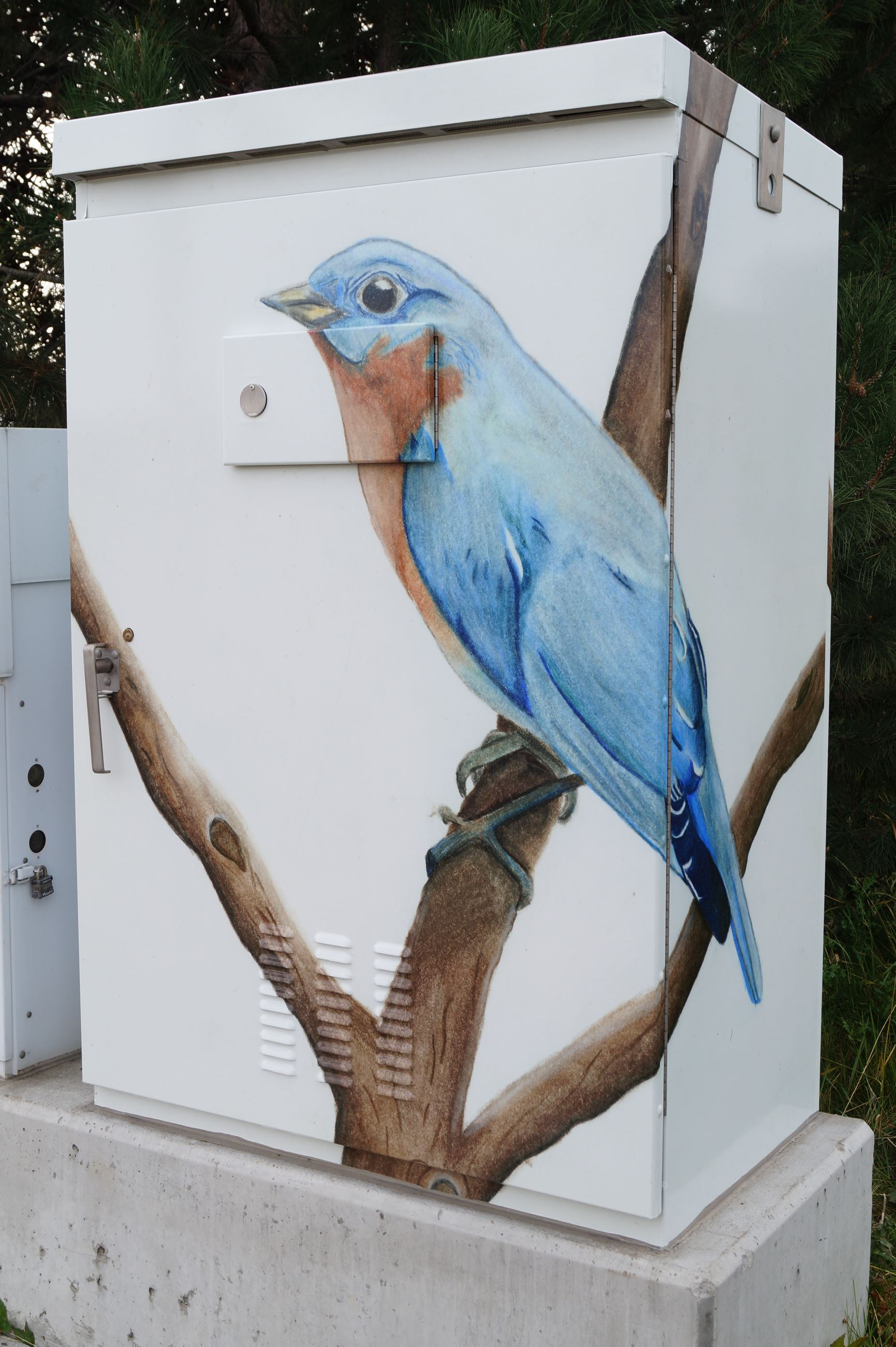 Electrical box with a painting of a bluebird on it.