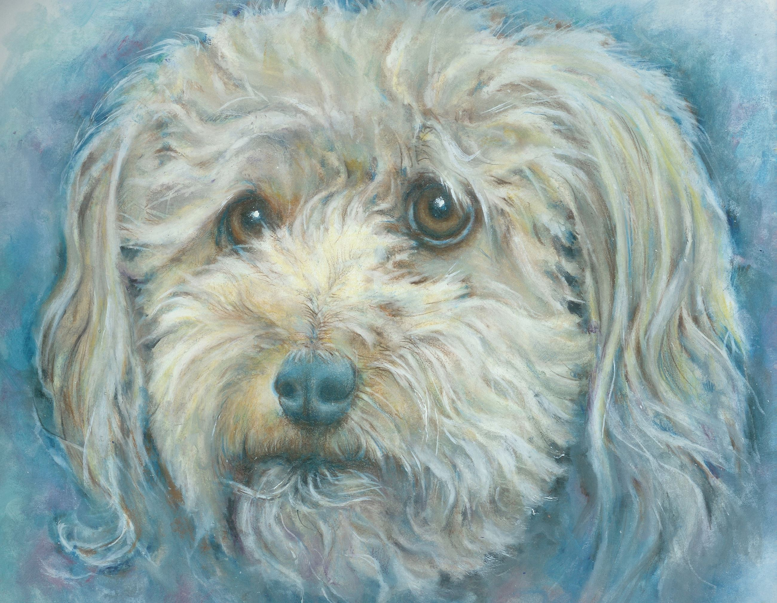 painting of a fluffy white dog's face with brown eyes and a blue nose